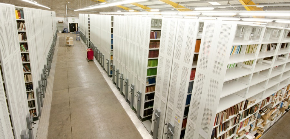 Bibliothek Rollregal